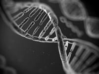 DNA签名技术助力打击赝品