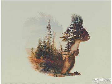 """当自然风光遇到野生动物 艺术家组成唯美""""双重曝光""""照片"""